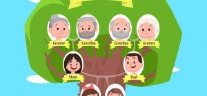 Árbol Genealógico en Inglés