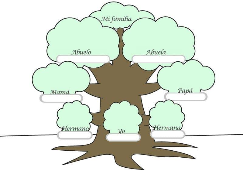 arbol genealogico en ingles y español de la familia